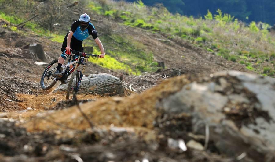 Gallery: www.bikeparkwales.com/gallery